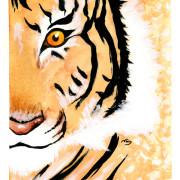 cinque-animali-qigong-tigre
