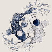 yin_yang_koi_autunno_corsi_shen_ming_news